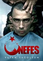 Search netflix Nefes